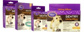 sentry-calming-dog